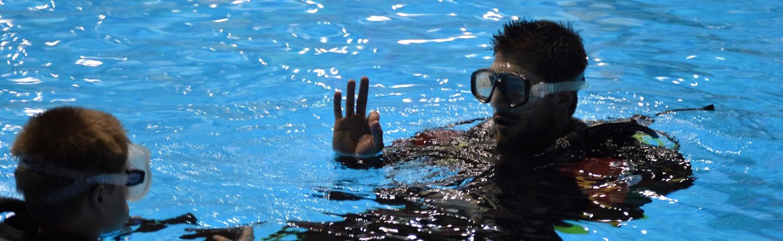 Cours de plongée stade olympique
